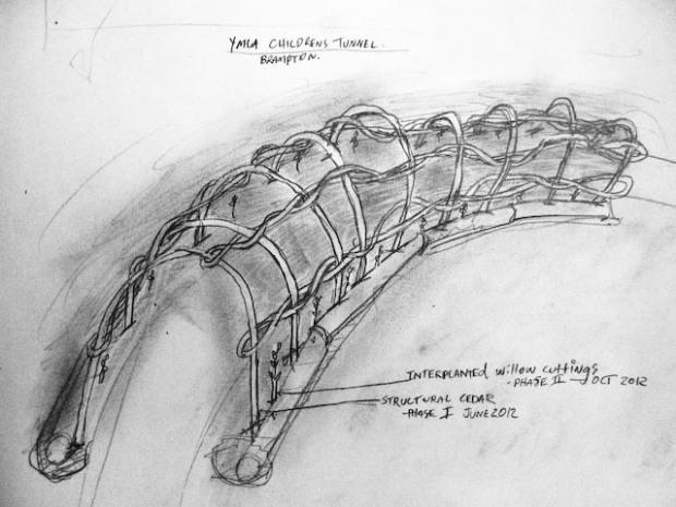 bent 'eastern white' cedar archway