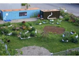 20090202-garden