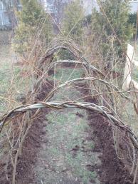 14' x 4' x 4' willow, 2013 (Cassandra Public School, Toronto)