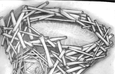"40"" x 30"" pencil on paper, 2008 (Evergreen Brick Works, Toronto)"
