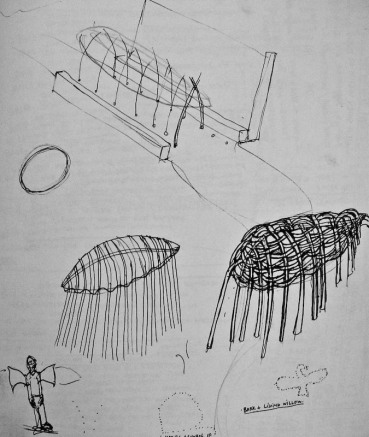 2011-living willow fencing and tunnel design