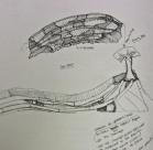 2009-interpretive geology landscape design