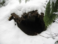so many of these structures include this tunnel which traps cold air when covered on both ends by animal hide